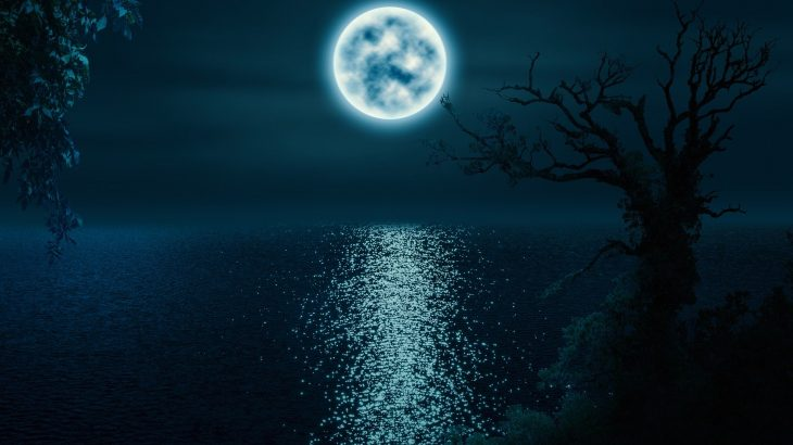 【演奏動画】ベートーヴェン「月光」ソナタ Beethoven Piano Sonata No.14 Moonlight